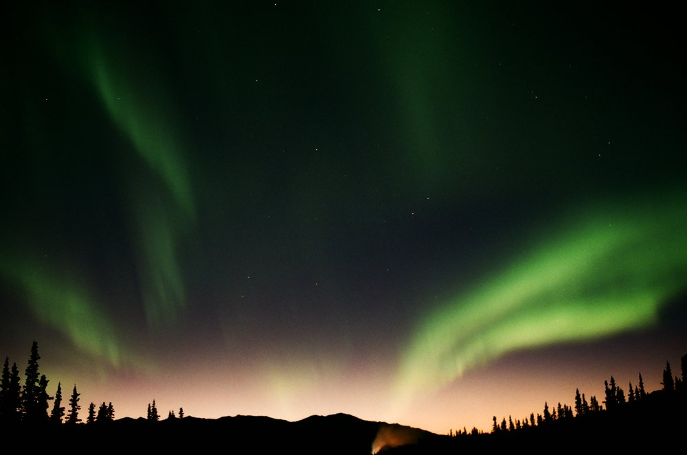 The early show: northern lights from my backyard, shot on 35mm.