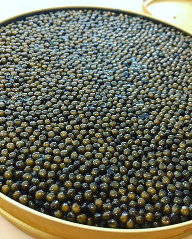 😻😻😻😻😻😻 Oh ya  #caviar #kaluga #omakase #atonyc #soho #nyceats #newyorkcity