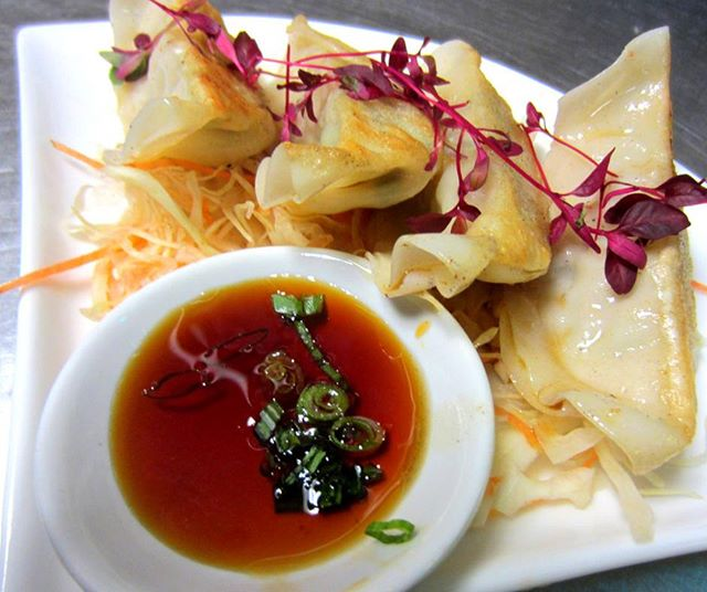 Gyoza (Japanese dumplings) - a traditional and popular Japanese snack that is juicy on the inside and crispy on the outside. They're perfect as a side dish to complement with your main teppanyaki meal. 🥟👌