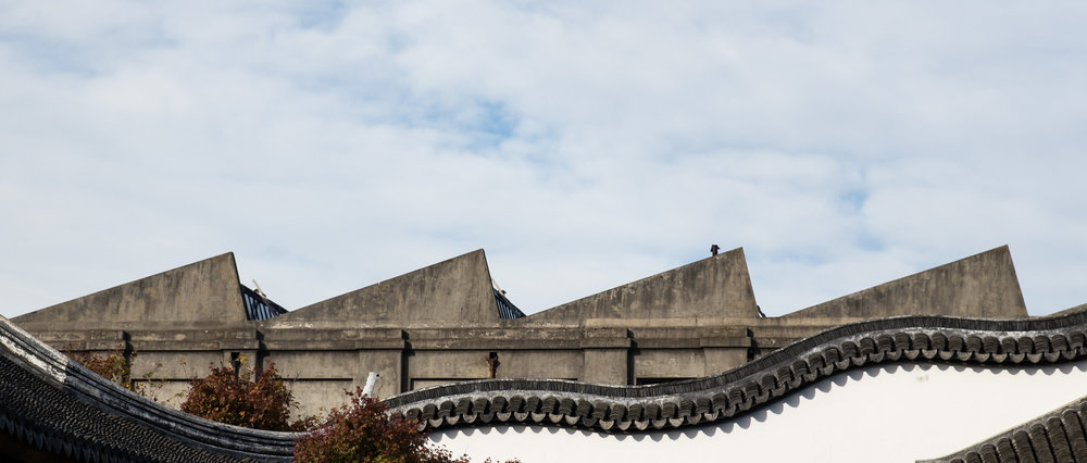 April 29. Visited the Chinese Gardens in central Dunedin.