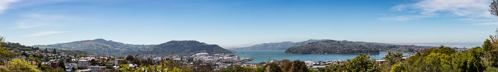 My favourite view of Dunedin. From the Unity Park Lookout. I'd often say that this version of Dunedin was trying to do an impression of one of those small fishing towns from a Studio Ghibli movie because I tend to say really dumb stuff about nice things.
