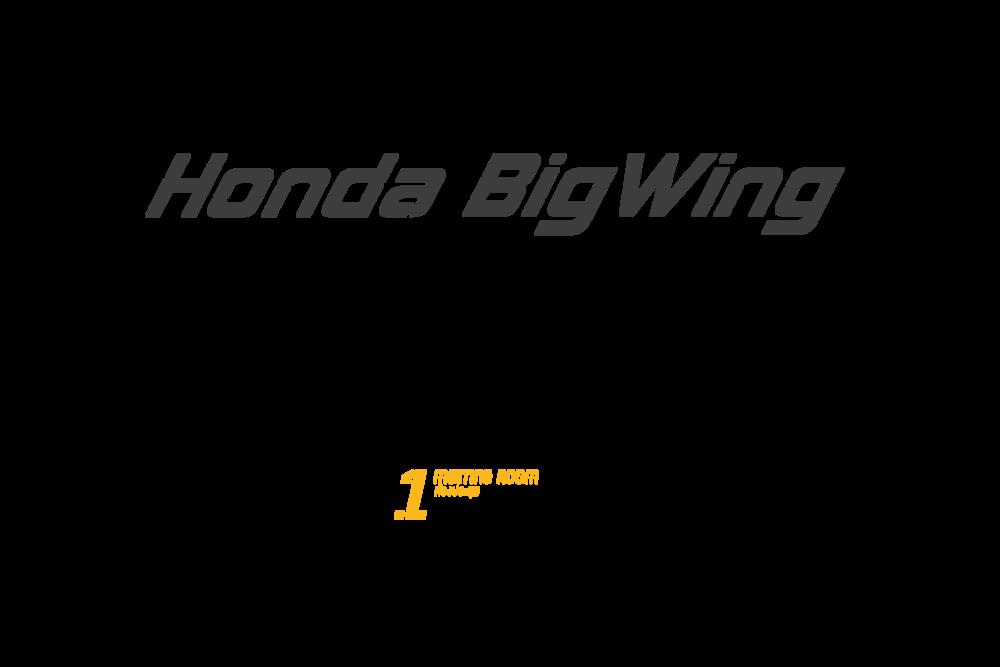 Honda_Type-01.png