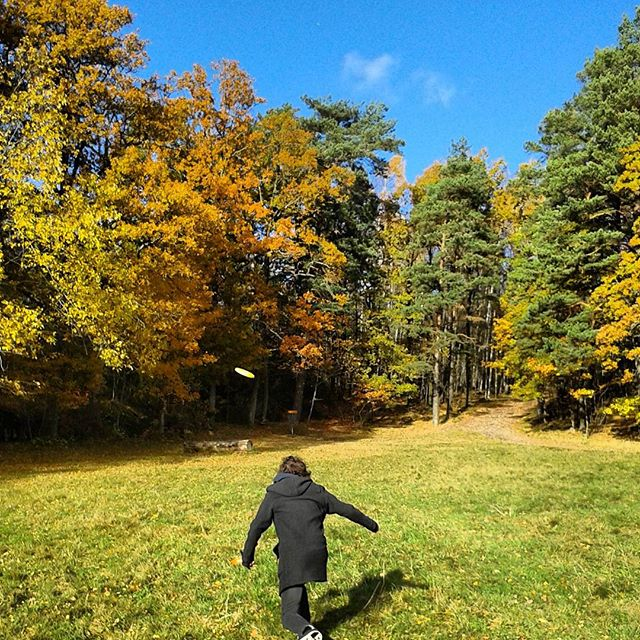 Frisbee golf in Autumn, near Harlanda Tjarn Gothenburg