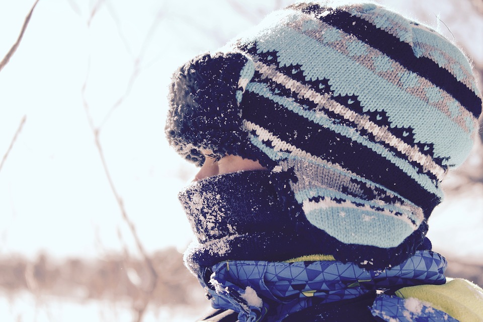winter-1209119_960_720.jpg