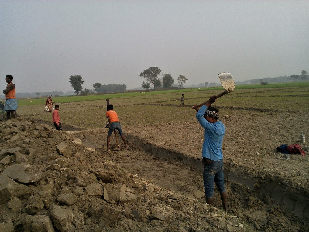 Young men works to construct a road under MGNREGA scheme. Credit: Zaheeb Ajmal