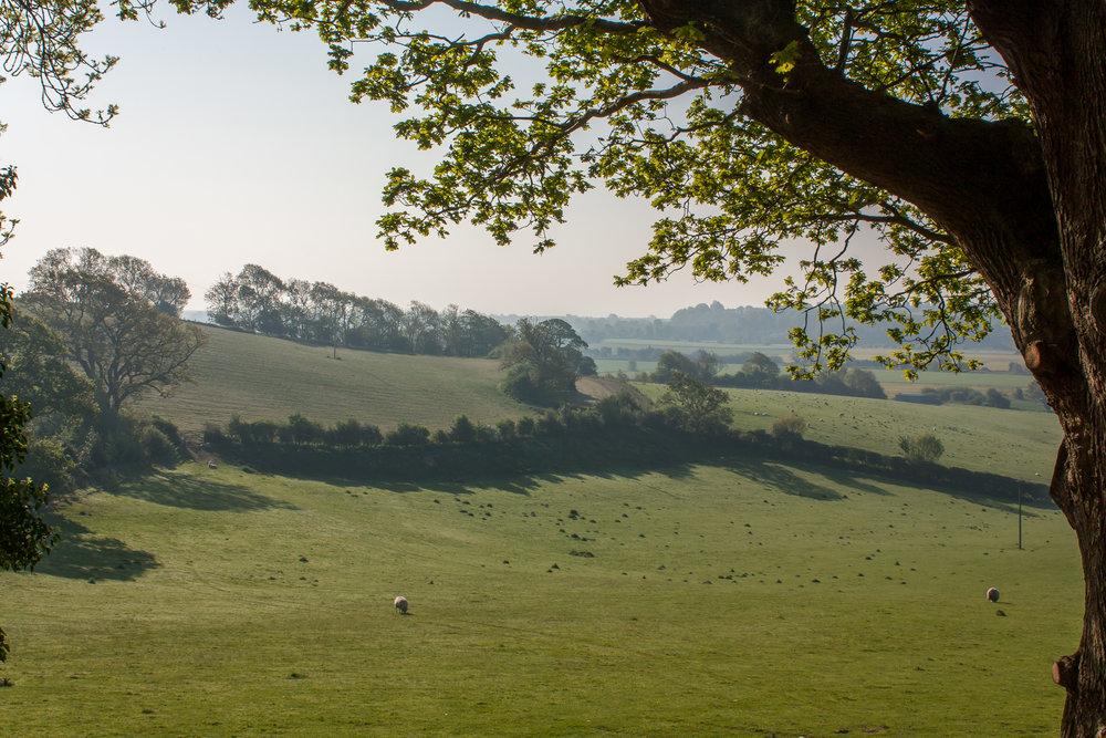 Shepherds Hut Rye East Sussex Countryside