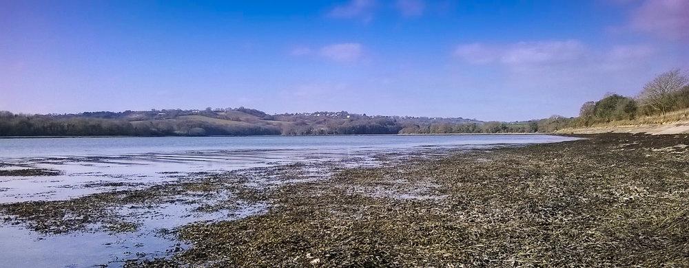 River Beach.jpg