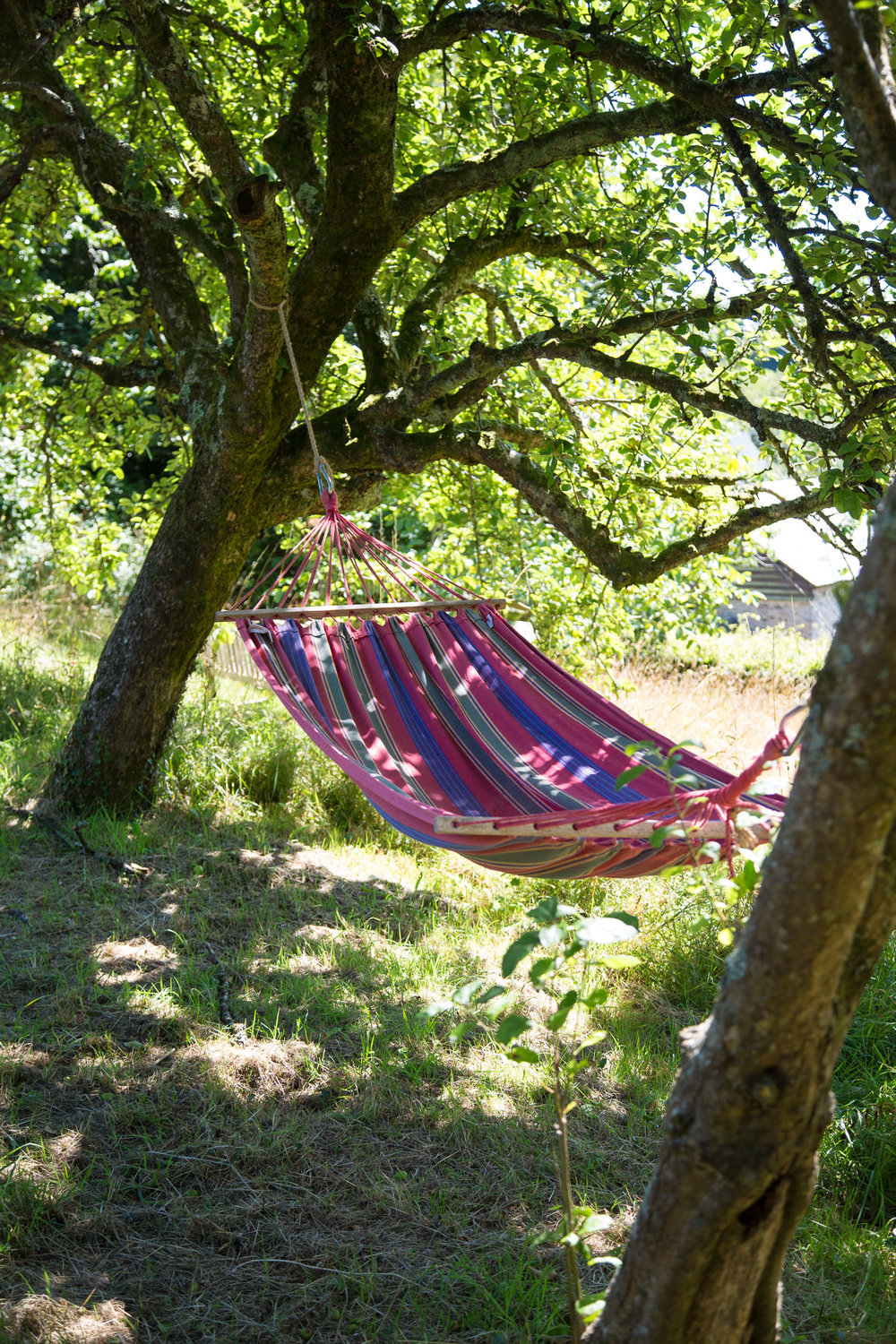 Hammock overlooking bridge.jpg
