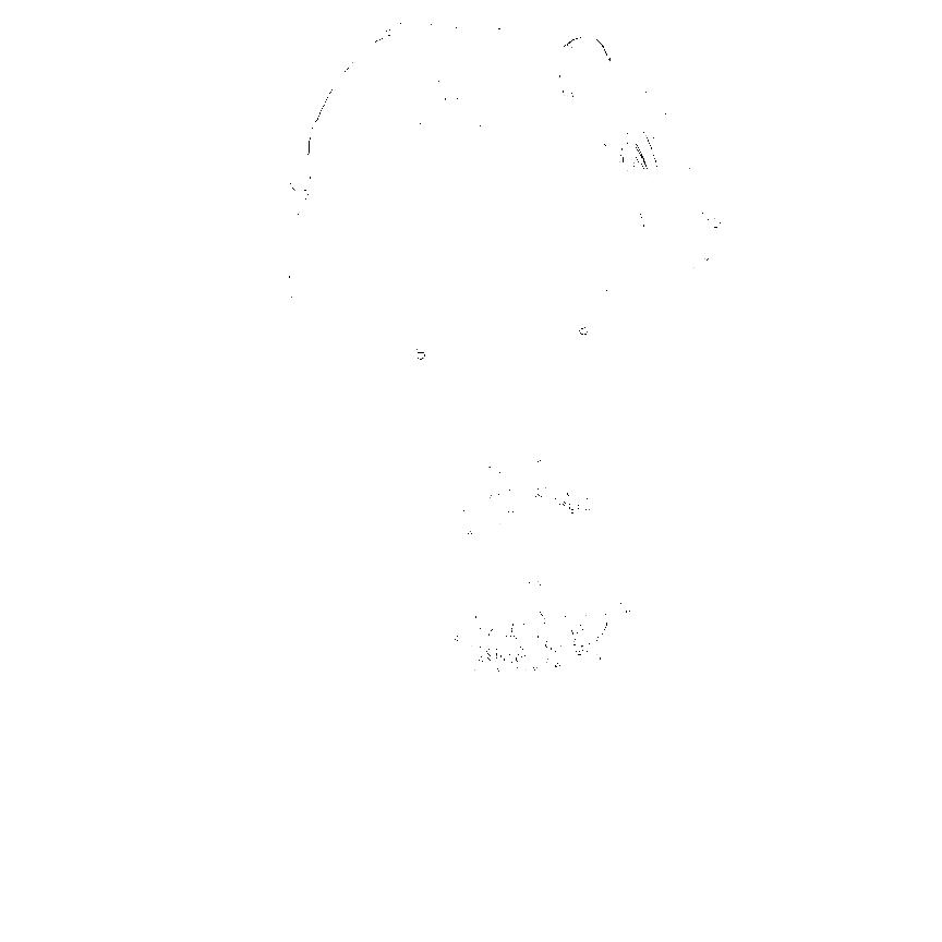 static.squarespace.jpg