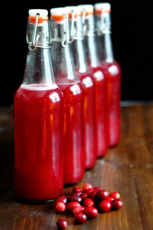 Fermented Christmas Soda.jpg