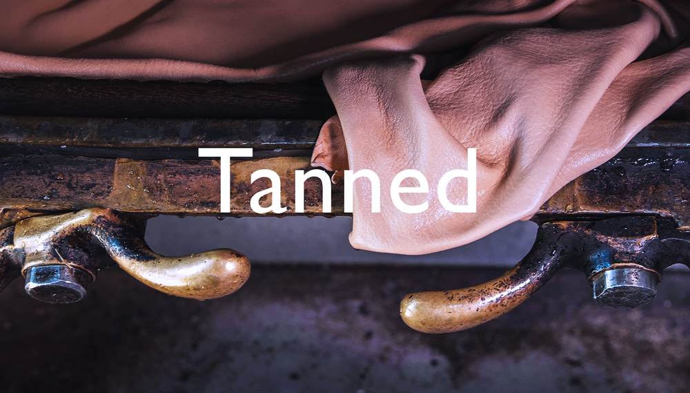 Homepage_TANNED.png