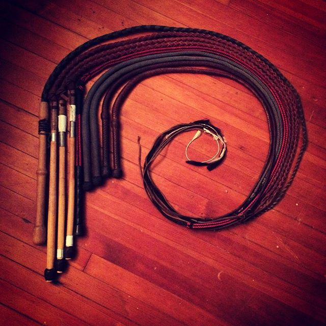 My whip collection. Still growing. #sideshow #whip #whipcracking