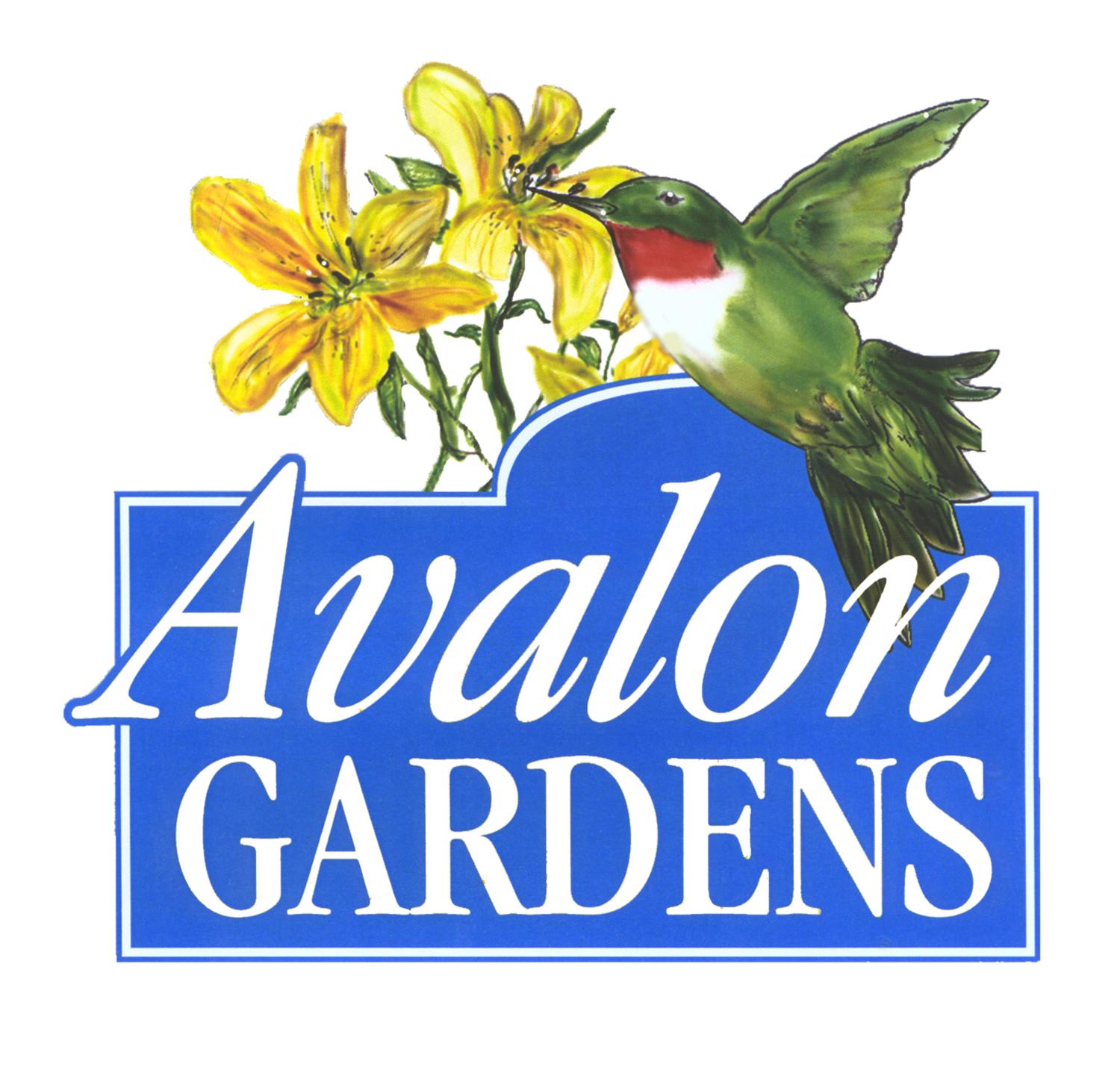 Avalon Gardens Inn