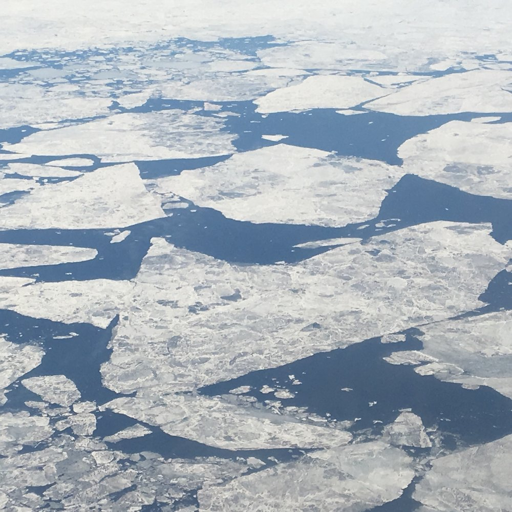 Thinning Arctic ice.jpg