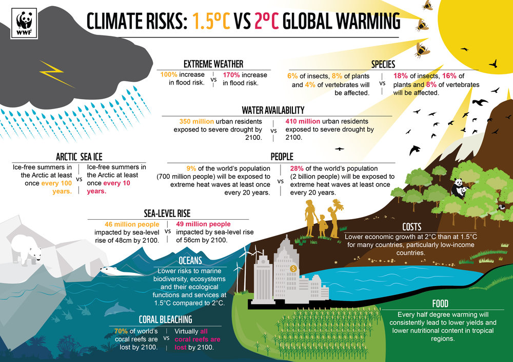 Climate risk infographic.jpg