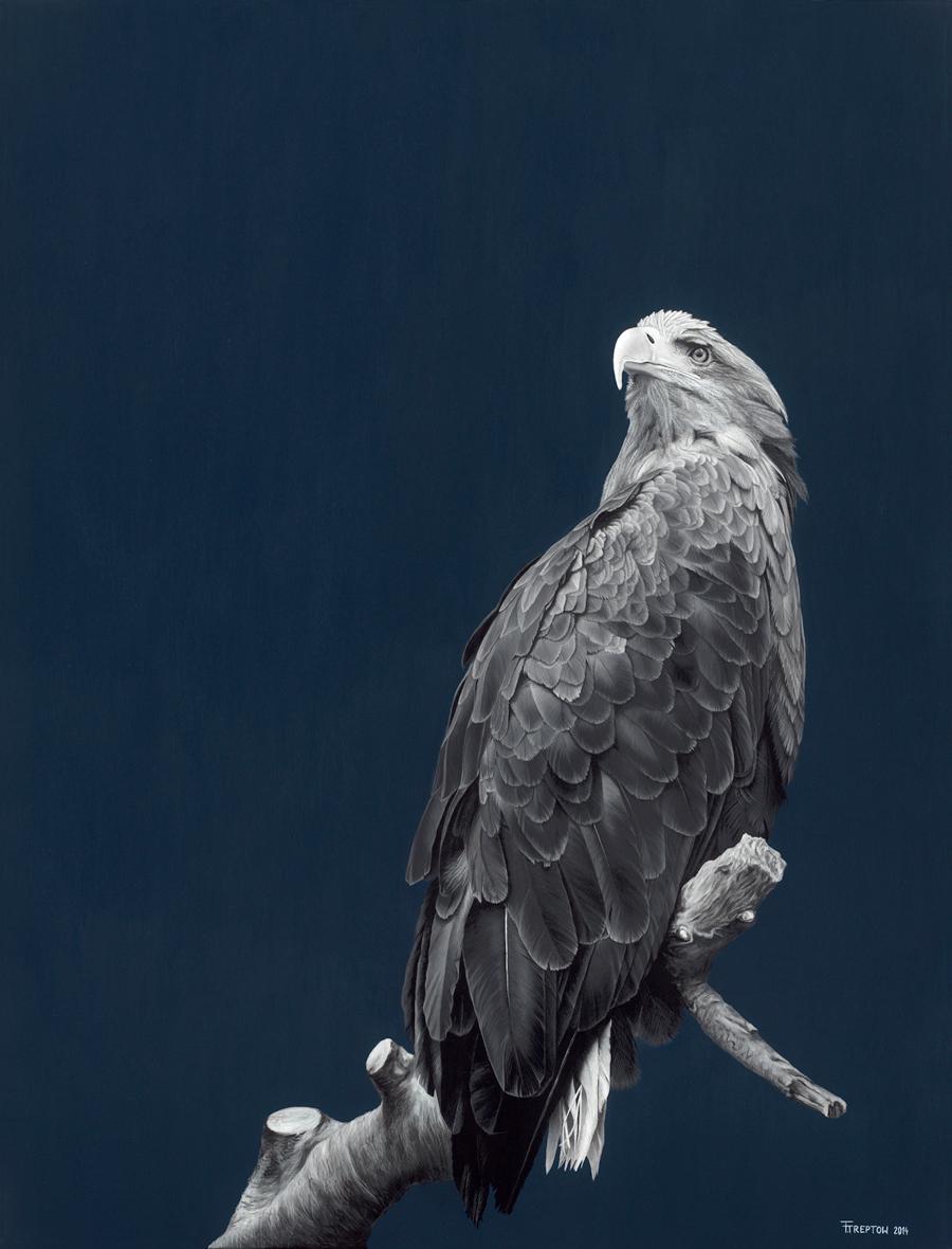 Eagle      2014    Acrylic on canvas  116cm x 89cm x 2cm