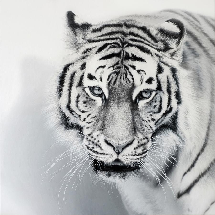 Tiger | SOLD      2015    Acrylic on canvas  80cm x 80cm x 2,5cm