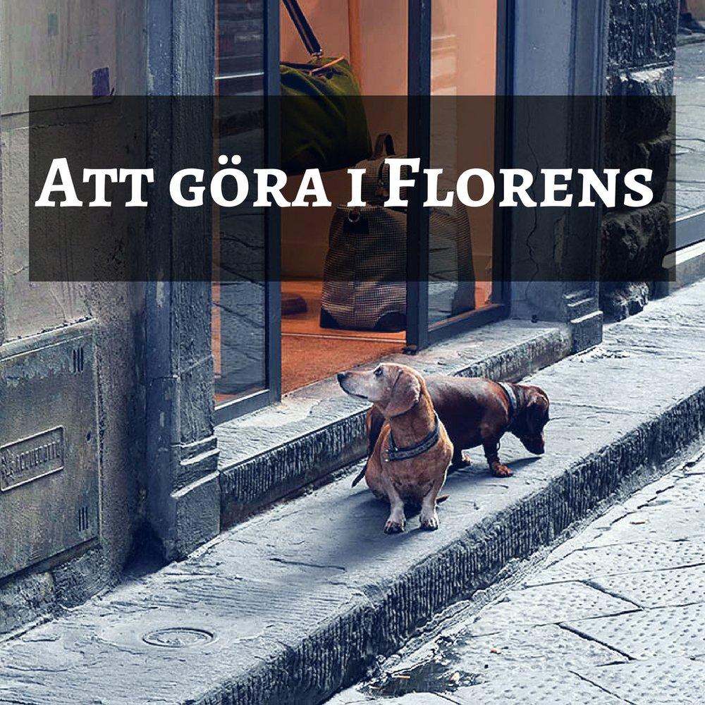 Att göra i Florens.jpg