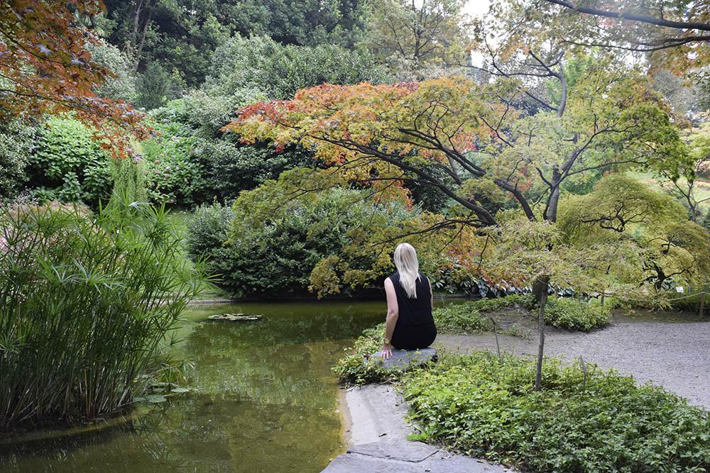 Japanska Trädgården i Villa Melzi Garden.