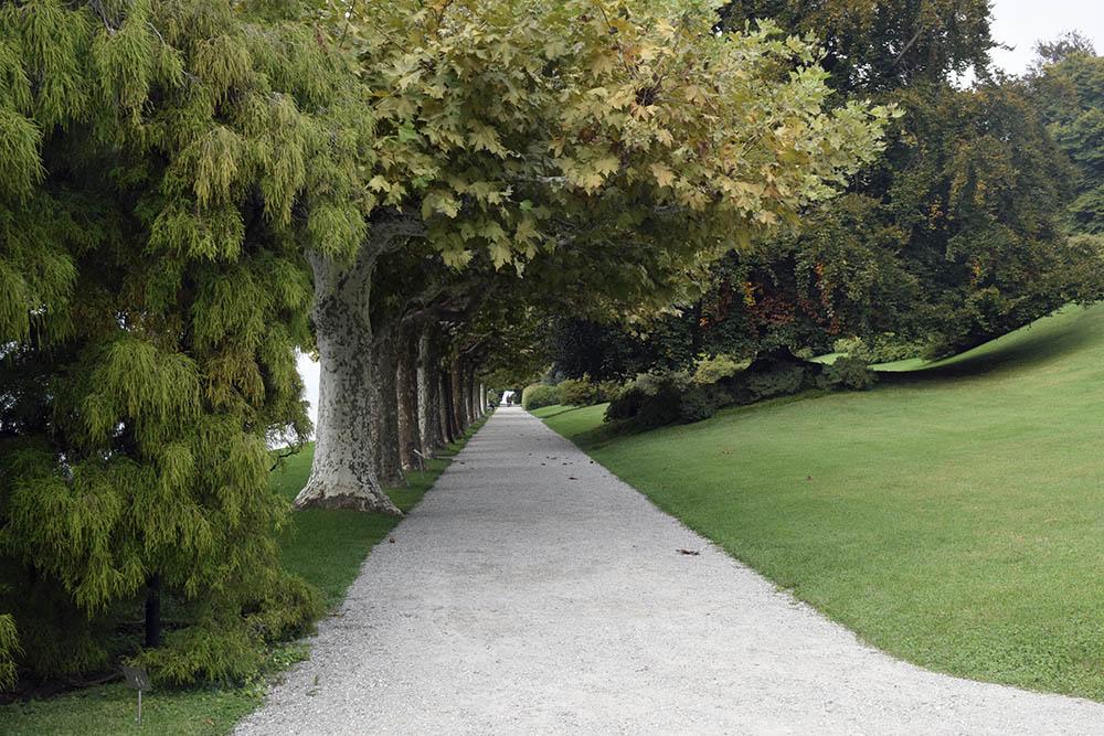 botanisk1.jpg