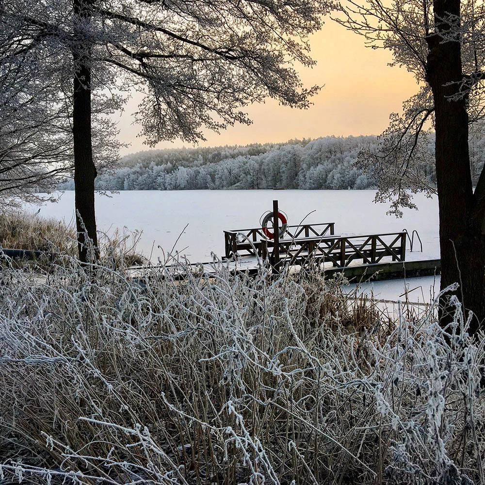 rimfrost.jpg