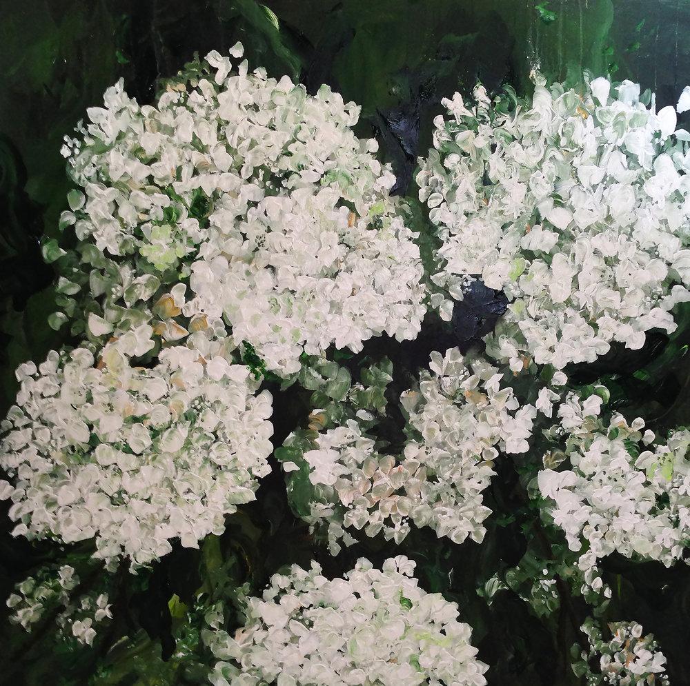 Limelight (48 x 48)