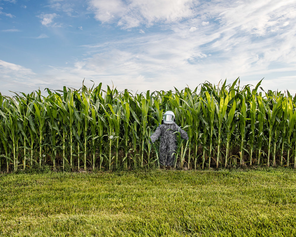 todd-bates-photo_spacesquatch_cornfield