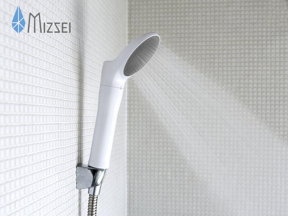 Mizsei-logo-image.jpg
