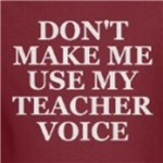 don't make me use my teacher voice education geek t-shirts