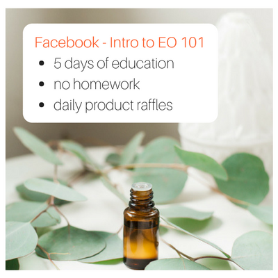 FB - Intro to EO 101 (2).png