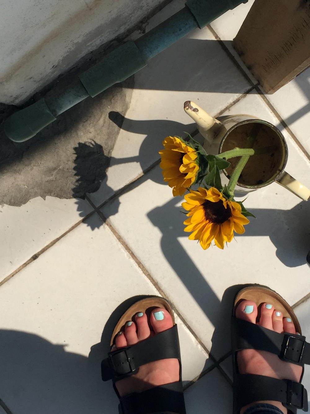 Chiang Mai Thailand sunflowers birkenstocks
