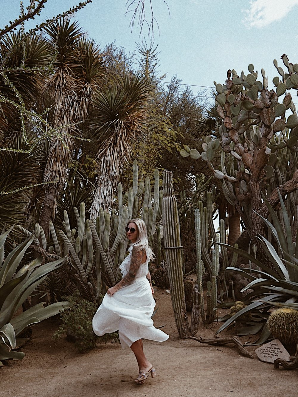 julia o test creative palm springs guide moorten botanical garden