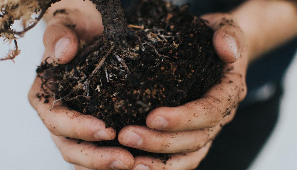 Kyle Ellefson - Children garden dirt