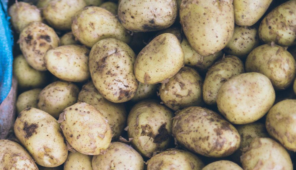 Linh Pham - Garden Potatoes with children