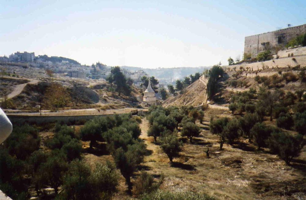 Israel Pics - 456.jpg