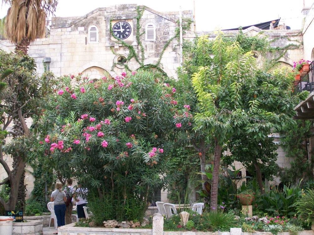 Israel Pics - 439.jpg