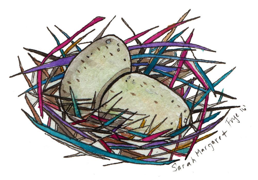 Eggs+#3+8-21-16+jpg.jpg