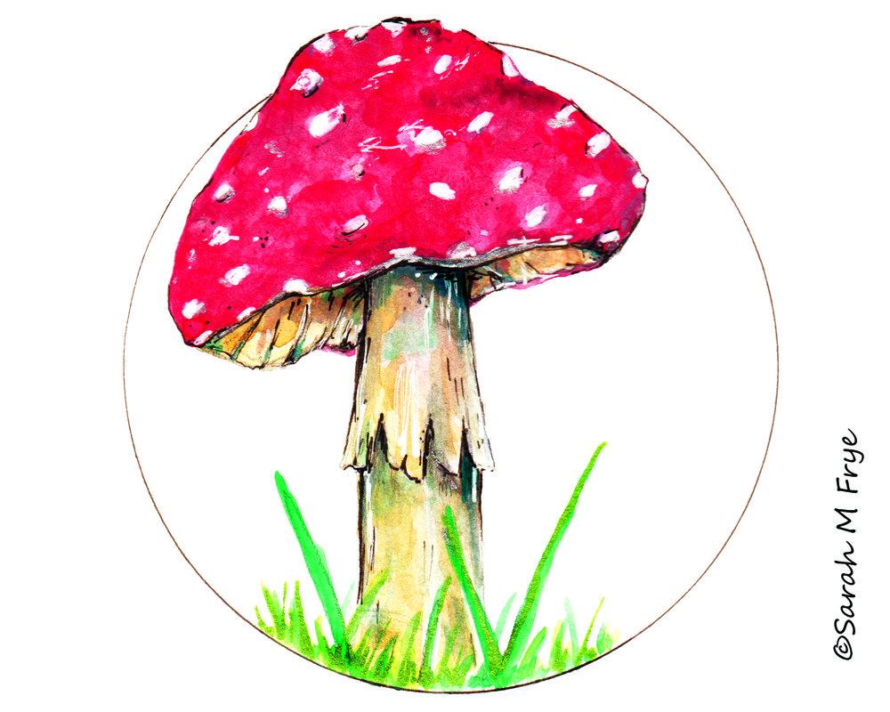 Miriams Mushroom web.jpg