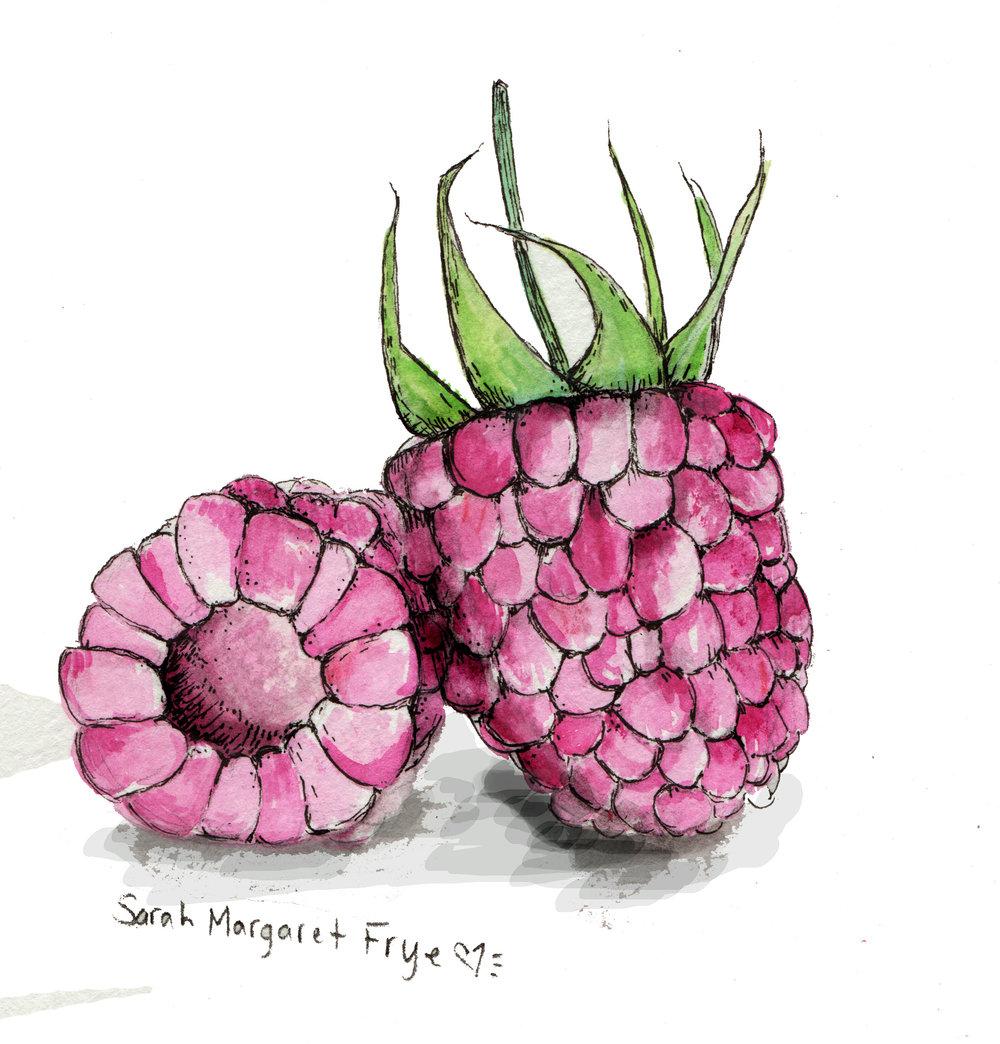 #1 Raspberries JPG 8-12-16.jpg