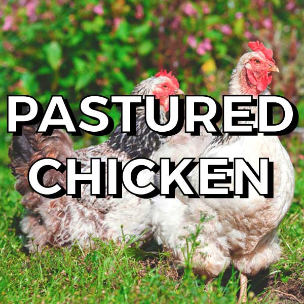 A great source of protein, calcium, selenium, B vitamins and good fat. We only use  pastured  and free range chicken.