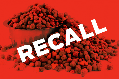 dog-food-recall.png