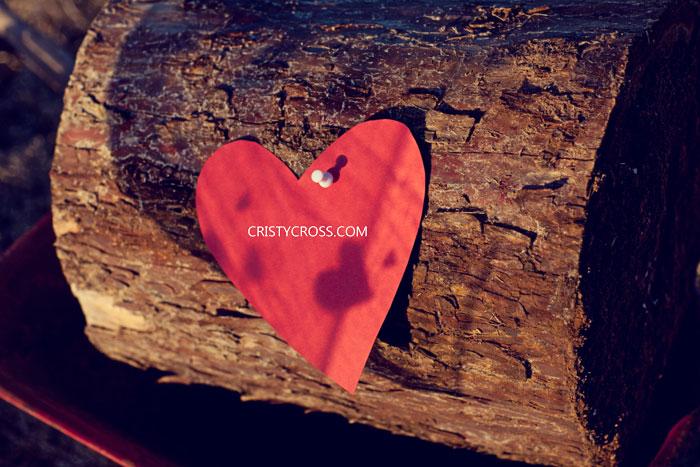 bensons-valentines-session-taken-by-clovis-portrait-photographer-cristy-cross4.jpg