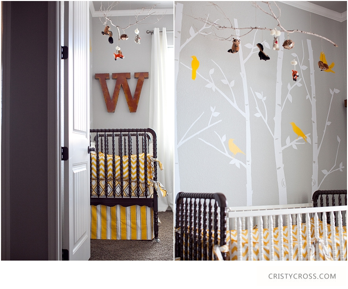 Cristy-Cross-Photography_baby-room_006.jpg