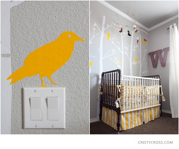 Cristy-Cross-Photography_baby-room_021.jpg