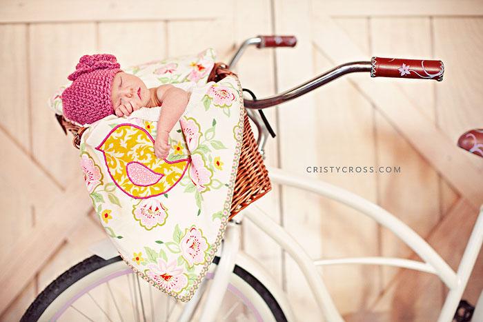 newbornparrtakenatundergroundembassyclovisnmbyportraitphotographercristycross