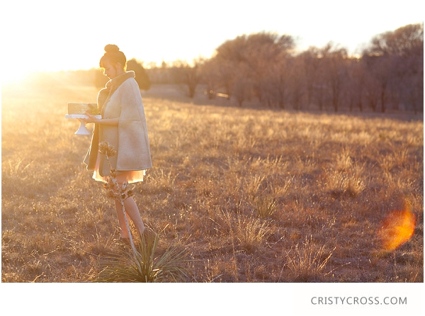 Styled Elopement Shoot taken by Clovis Wedding Photographer Cristy Cross_0066.jpg