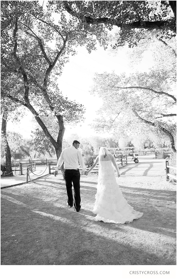 Krystal and Andy's Outdoor New Mexico Wedding at Hyatt Regency Tamaya Resort taken by Wedding Photographer Cristy Cross__0026.jpg
