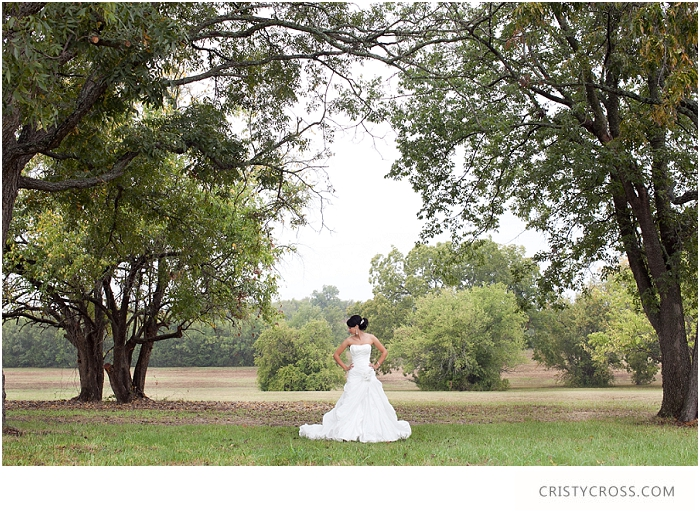 Megan and Kyle's Backyard Texas Wedding taken by Clovis Wedding Photographer Cristy Cross_0223.jpg