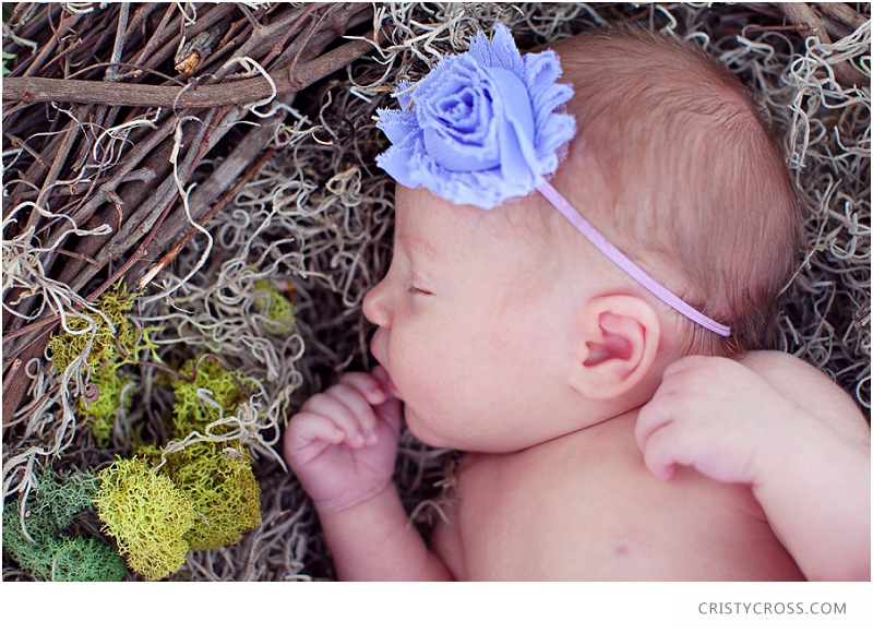The Carter's Newborn and Family Lifestyle Clovis, New Mexico Shoot taken by Clovis Portrait Photographer Cristy Cross_0220.jpg