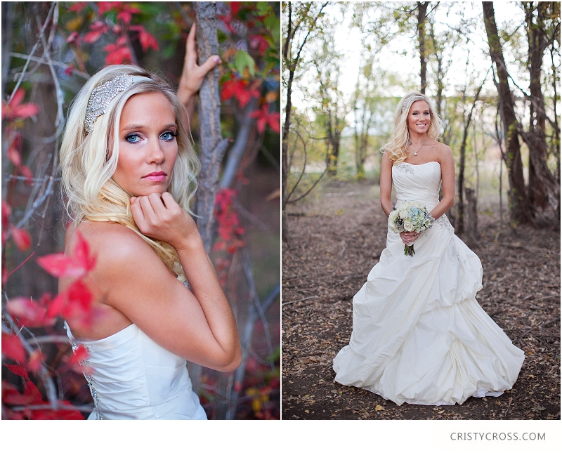 Courtney's Elegant Sunday Bridal Shoot taken by Clovis Wedding Photographer Cristy Cross_0008.jpg